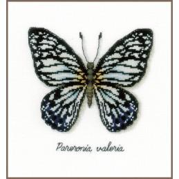 Telpakket blauwe vlinder